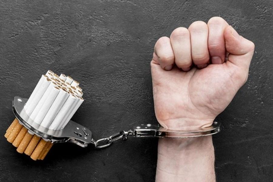 تصویر افزون بر ۱۶ هزار بسته تنباکوی قاچاق کشف شد