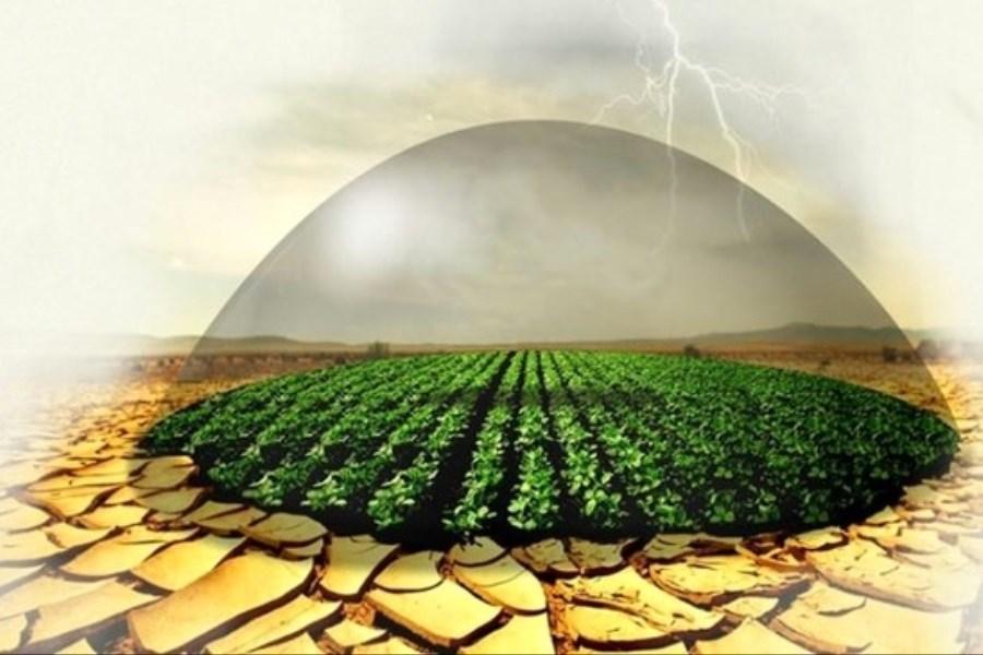 شرط توسعه کشاورزی کشور در بحران آب چیست؟