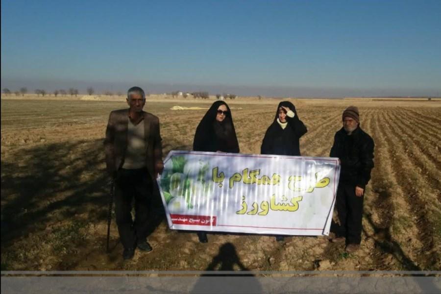 تصویر طرح همگام با کشاورز، 15 هزار هکتار اراضی را تحت پوشش قرار میدهد