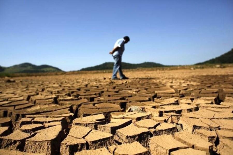 خسارت 6 هزار میلیاردی خشکسالی به کشاورزی کردستان/ افتتاح 100 پروژه در هفته جهاد کشاورزی