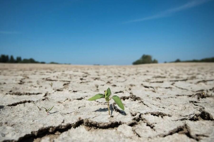 کاهش 46 درصدی بارندگی در سمنان
