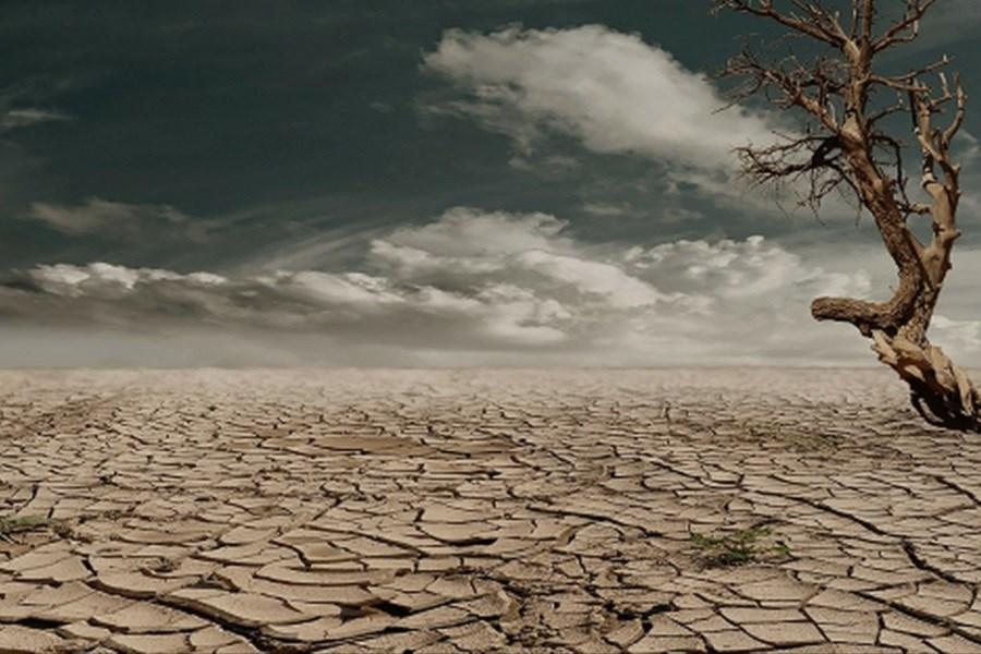 خسارت چهل هزار میلیارد ریالی خشکسالی به بخش کشاورزی و منابع طبیعی