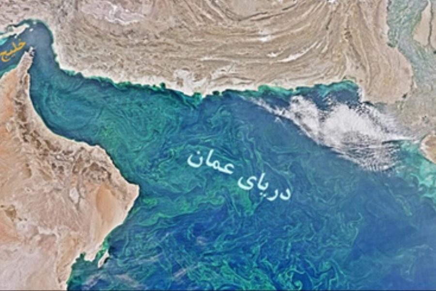 کشف منطقه بدون اکسیژن دریای عرب