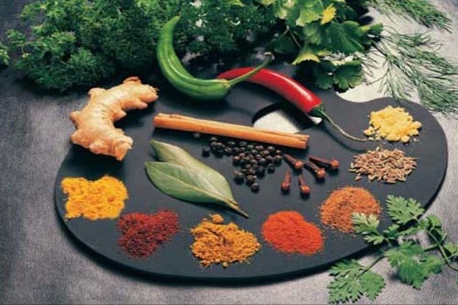 450 گونه گیاهان دارویی در آذربایجان شرقی شناسایی شده است