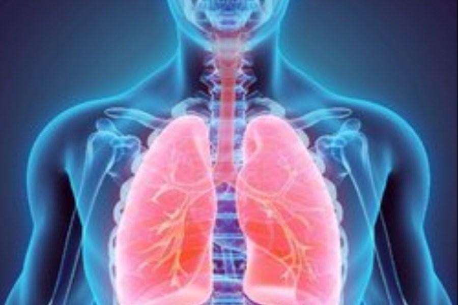 سلولهای سرطان ریه، کبد را برای تامین سوخت خود به کار میگیرند!