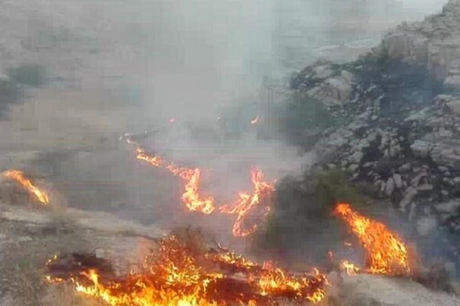 مهار  آتش سوزی در منطقه جنگلی پیرداود ورزقان