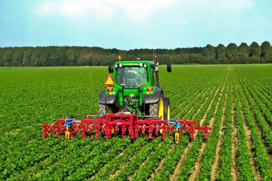 برداشت محصول نخود فرنگی آغاز شد/ پیشبینی برداشت 6 هزار و 640 تنی نخود فرنگی
