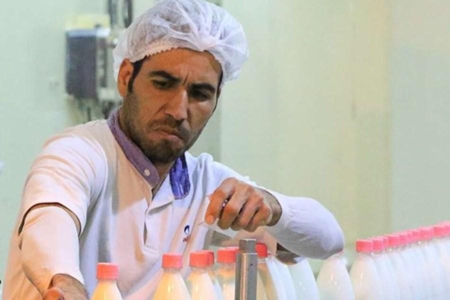مخالفت دامداران با افزایش قیمت شیرخام