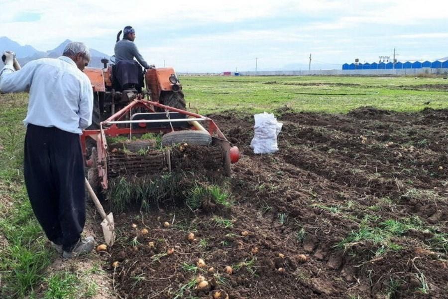 نقش کشت قراردادی در تنظیم بازار محصولات کشاورزی