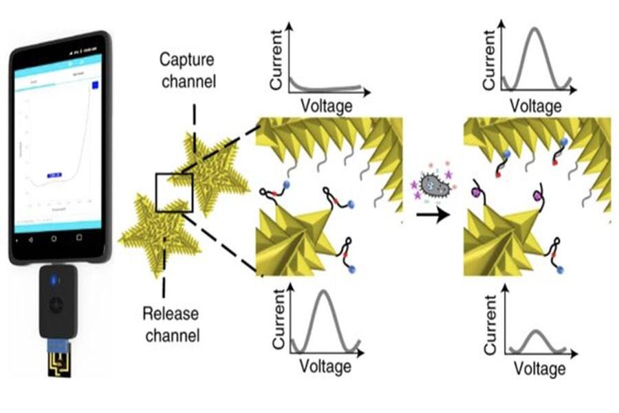 ابداع دستگاهی که عفونت را با کمک موبایل در یک ساعت شناسایی می کند