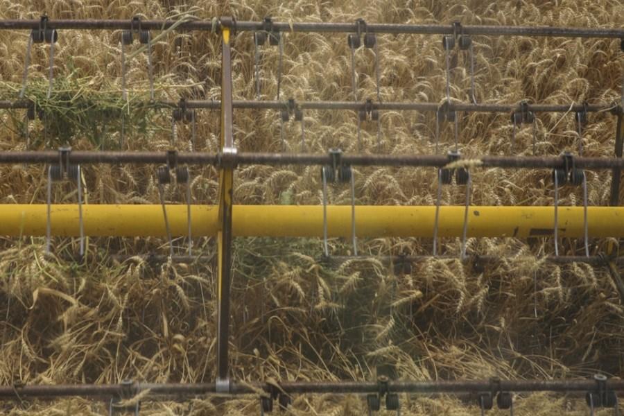 زمان اجرای  اصلاحیه نظام صنفی کشاورزی ابلاغ شد