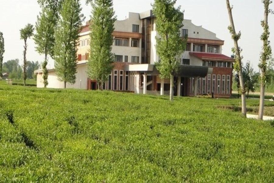 زمین خواری، رویهای تلخ در مازندران