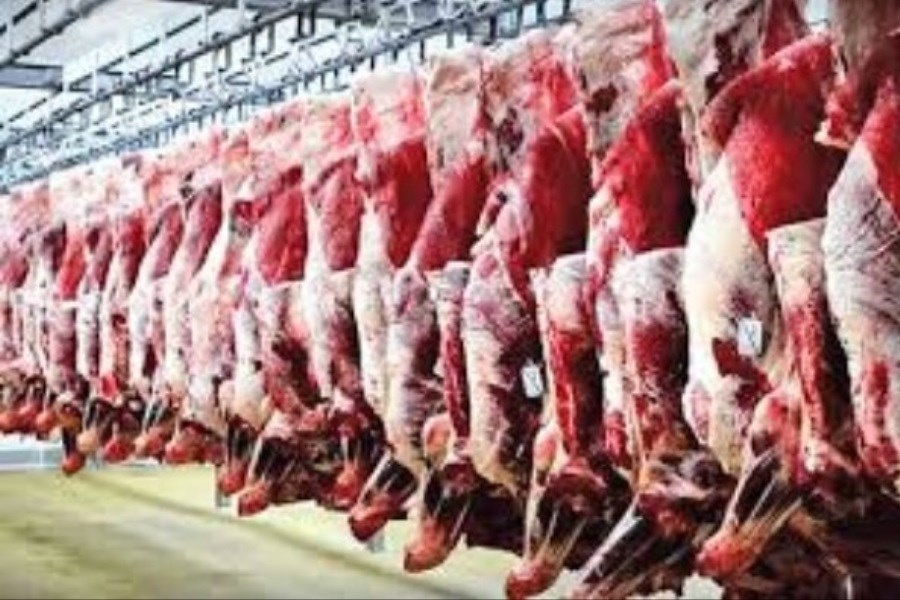 خروج ۱۴ هزار کیلوگرم گوشت از چرخه مصرف در خوزستان