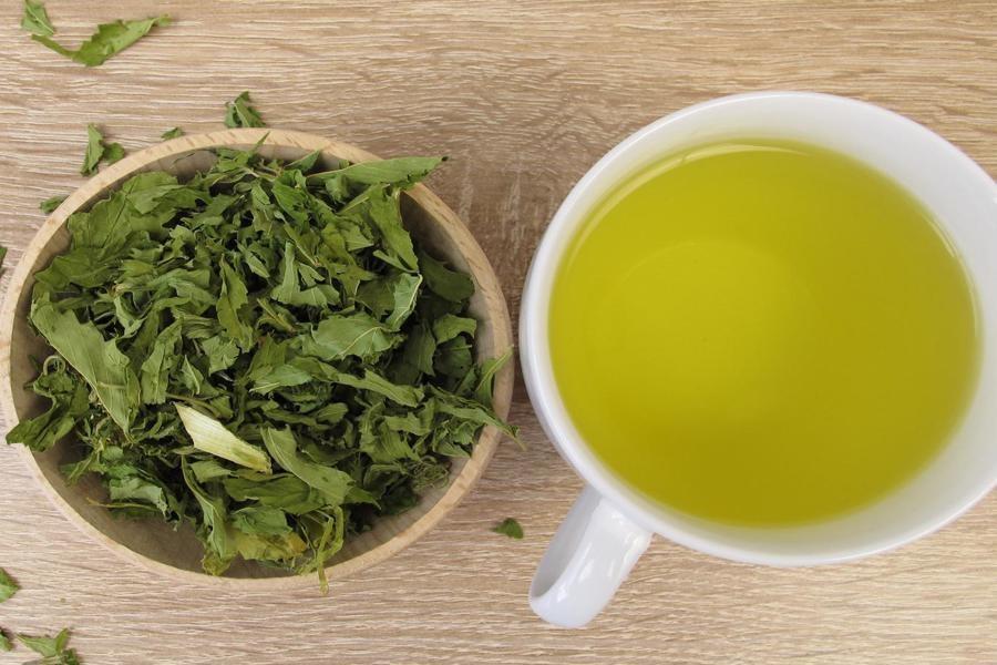 صادرات 15 میلیون دلاری چای ایرانی به 17 کشور دنیا