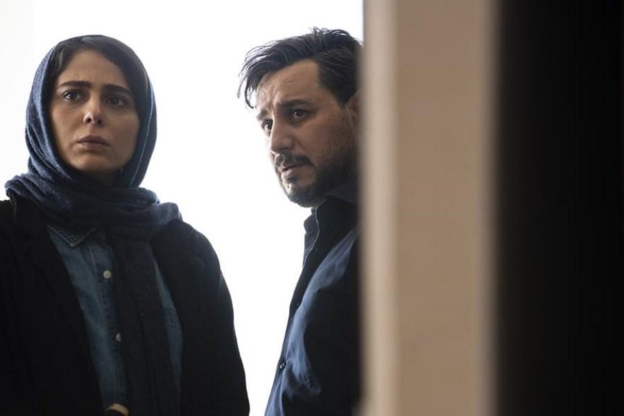 تکذیب شکایت سازمان سینمایی از «زخم کاری»