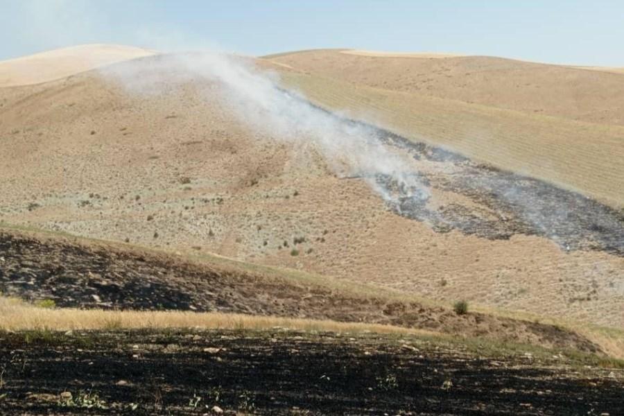 آتش سوزی در منطقه حیدرلوی ارومیه مهار شد/2.5 هکتار از مزارع دیم طعمه آتش شد