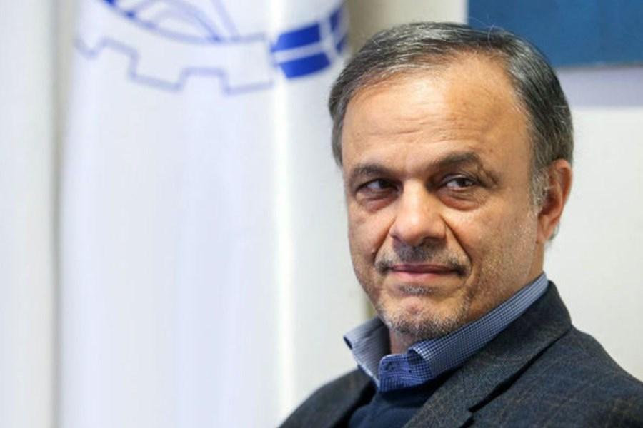 نمایندگان خواستار شکایت از وزیر صمت به دلیل عدم حمایت از دامداران شدند