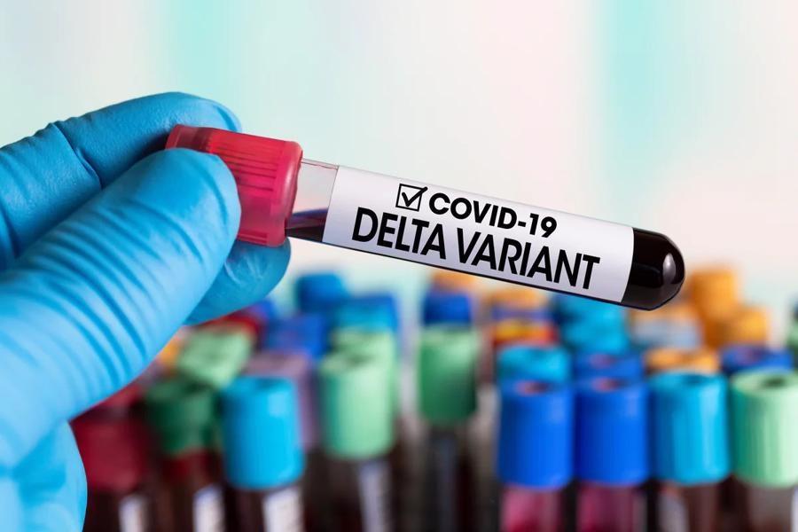 احتمال وجود ویروس دلتا کرونا در گیلان/ رنج ابتلا به بیماری در حال افزایش است