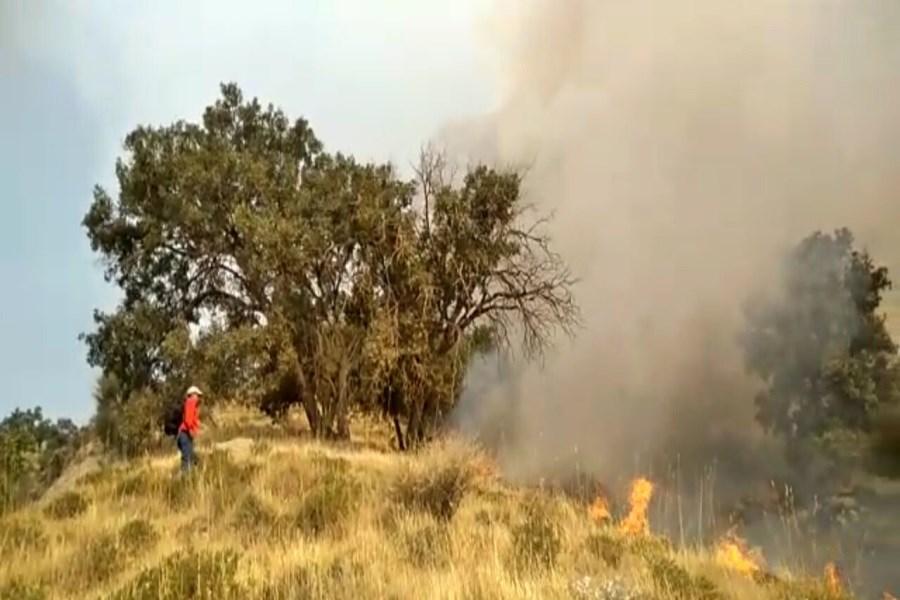 """آتش سوزی در منطقه حفاظت شده """"خامی"""" گچساران"""