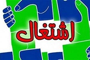 تصویر  تعداد شغلهای ایجاد شده در دولت روحانی+جدول