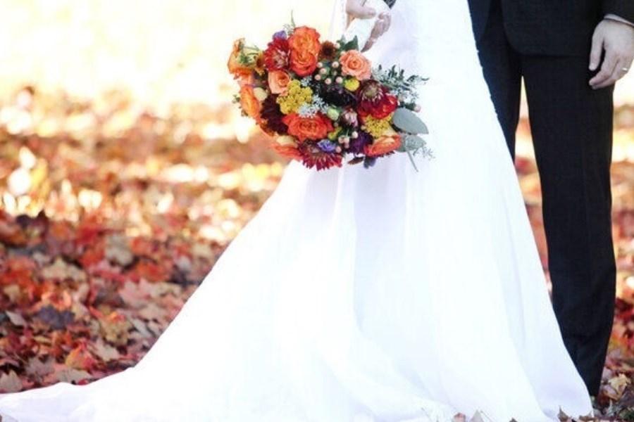 اولین ازدواج اپلیکیشنی در ایران ثبت شد