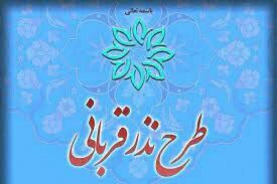 جزئیات دریافت نذورات در قالب طرح «نذر قربانی» توسط کمیته امداد استان تهران