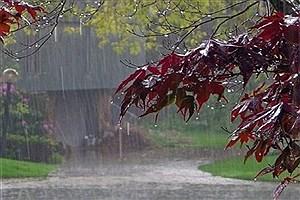 تصویر  بارشها در چهارمحال و بختیاری تا پایان هفته جاری ادامه دارد
