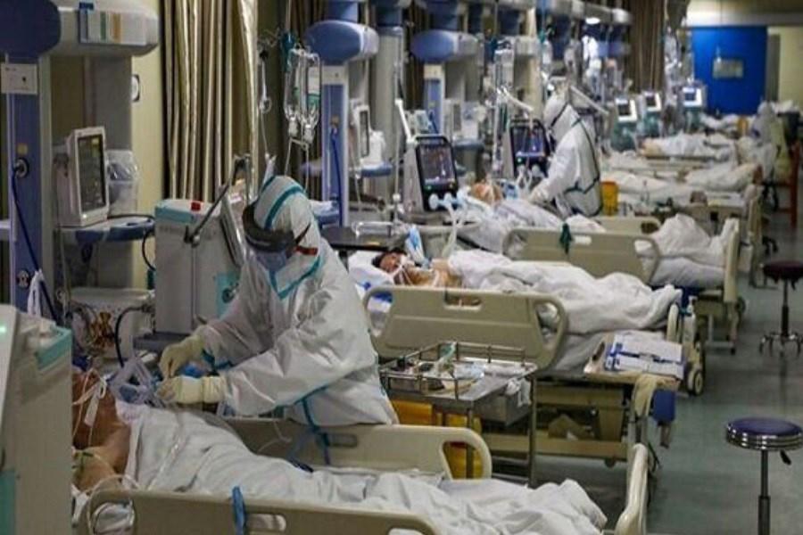 ابتلای 80 درصد مراجعان بیمارستان گناوه به کرونا
