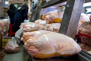 تصویر  پیش بینی قیمتهای نجومی برای بازار مرغ