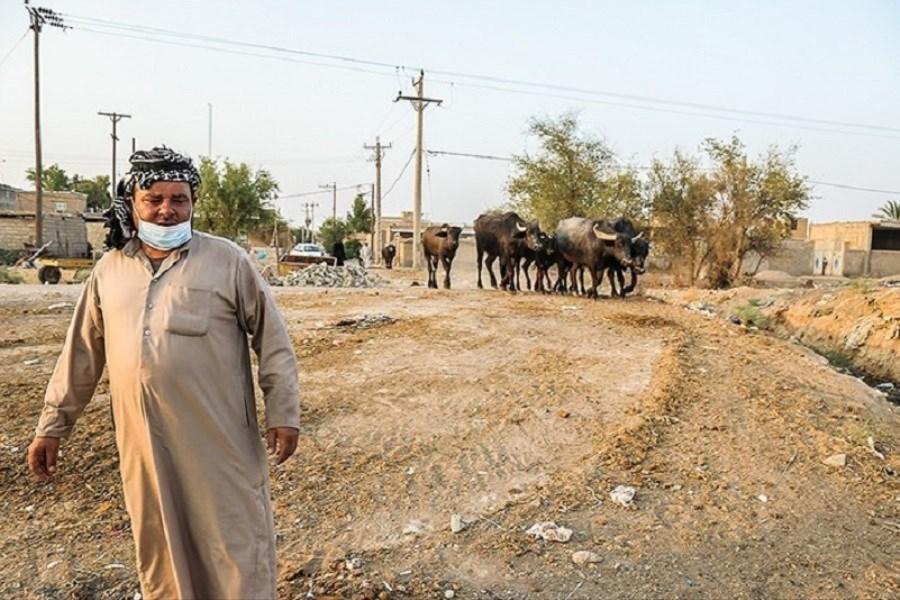 آیا مسوولان خوزستان، مُردهاند؟