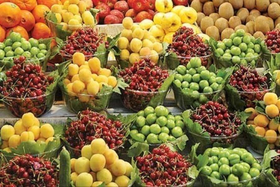 دلالها مانع کاهش قیمت میوه هستند