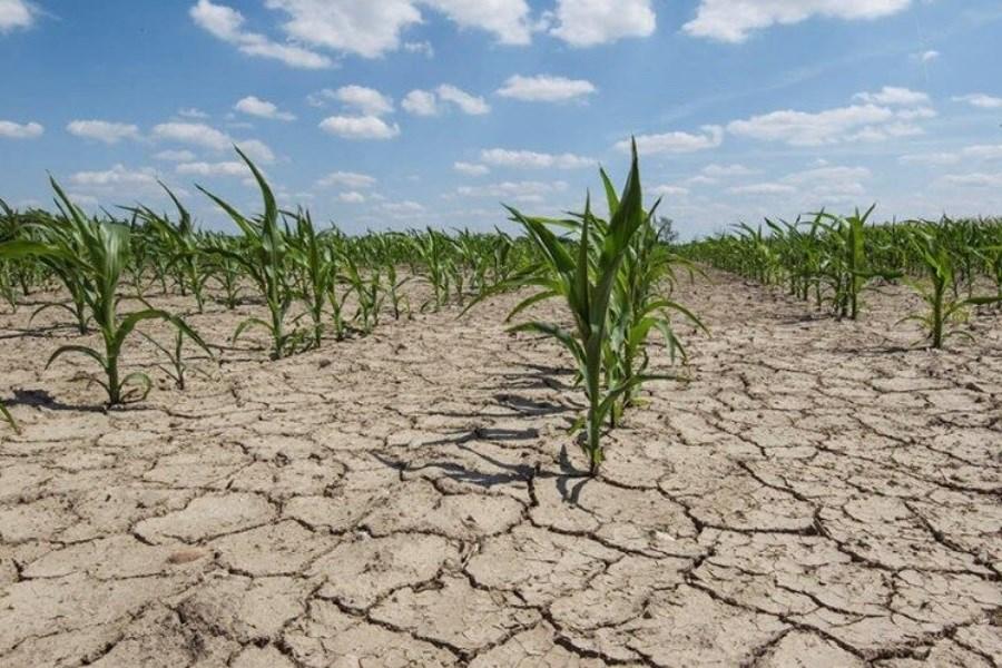 تامین آب، دغدغه این روزهای کشاورزان دزفول
