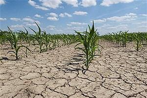 تصویر  تامین آب، دغدغه این روزهای کشاورزان دزفول
