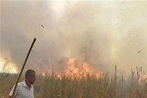 تصویر  وضعیت فوق بحرانی آتشسوزی در ۳۰ هزار هکتار عرصههای مهدیشهر سمنان