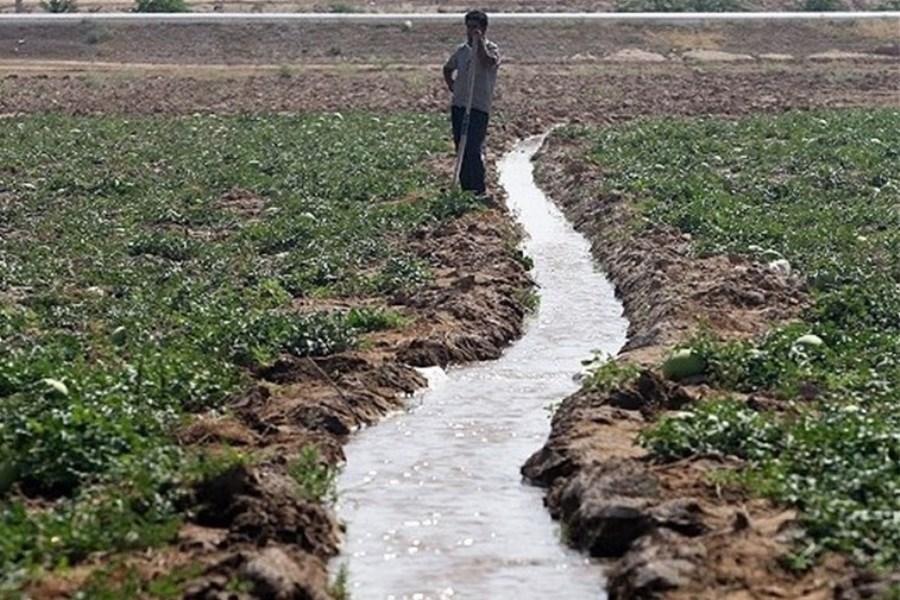 خوزستان قطب کشاورزی کشور / بی مدیریتی عامل اجرایی نشدن طرح امنیت غذایی