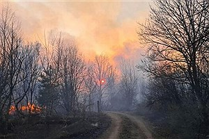 تصویر  خاموشی کامل آتش میانکاله