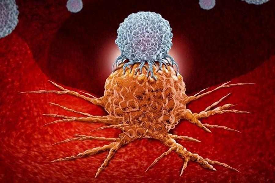 کشف روش تازه پژوهشگران انگلیسی در برابر سلولهای سرطانی