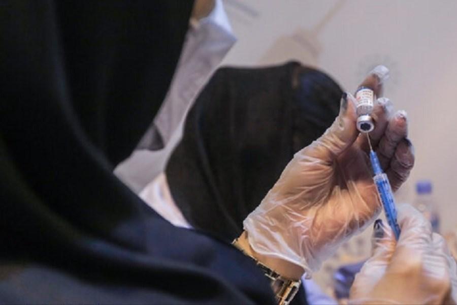 تصویر آغاز واکسیناسیون اساتید دانشگاه تربیت مدرس