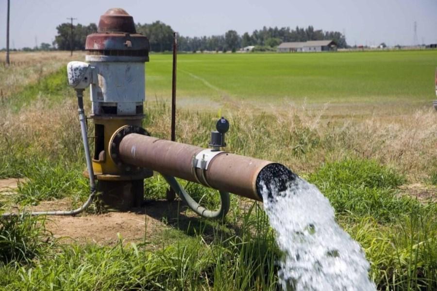 سرمایه گذاری ۵۲۰۰ میلیارد ریالی برای قرار گرفتن گچساران در مسیر کشاورزی پایدار