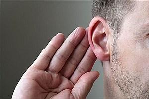 تصویر  کشف راهکاری تازه برای بازگرداندن شنوایی