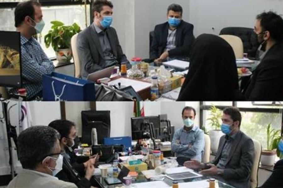 جلسه ممیزی وضعیت ارز دیجیتال شرکت بیمه آرمان