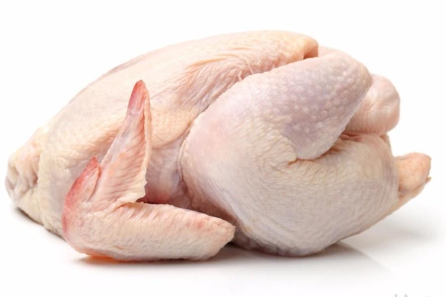 تصویر چرا باید مرغ سبز مصرف کنیم؟
