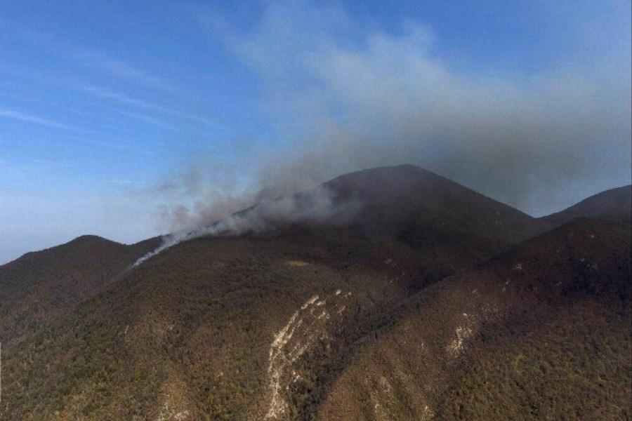 دمای 45 درجه و هشدار آتشسوزی در جنگلهای گلستان