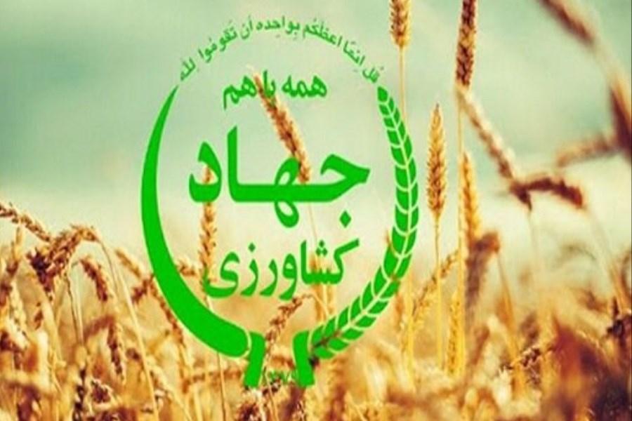 مدیران جهاد کشاورزی شهرستانهای کرمانشاه و صحنه برکنار شدند