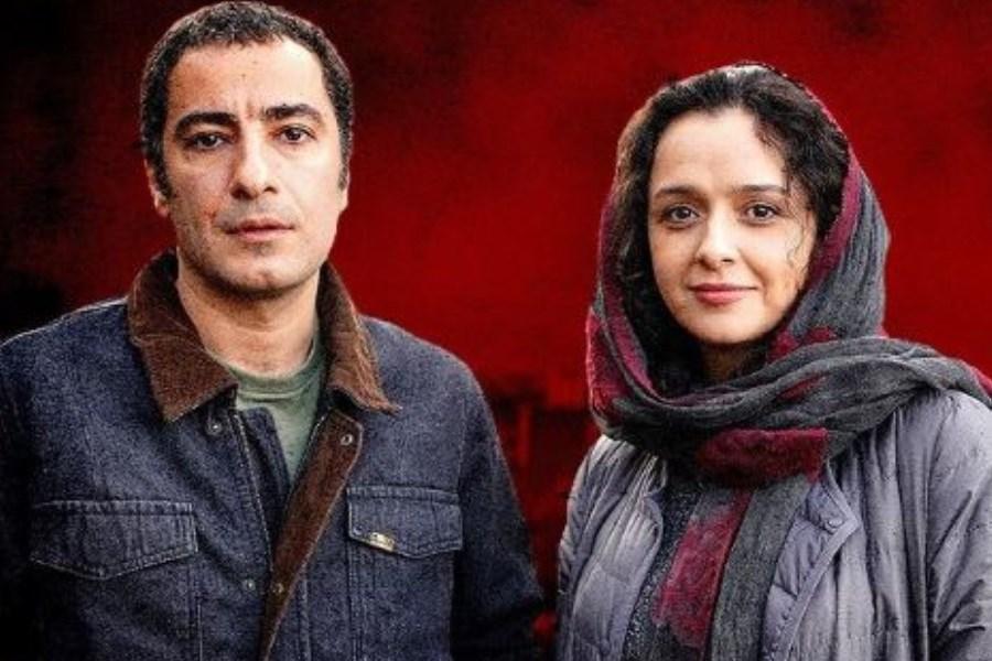 گمانه ها برای بازی نوید محمدزاده و ترانه علیدوستی در فیلم سعید روستایی