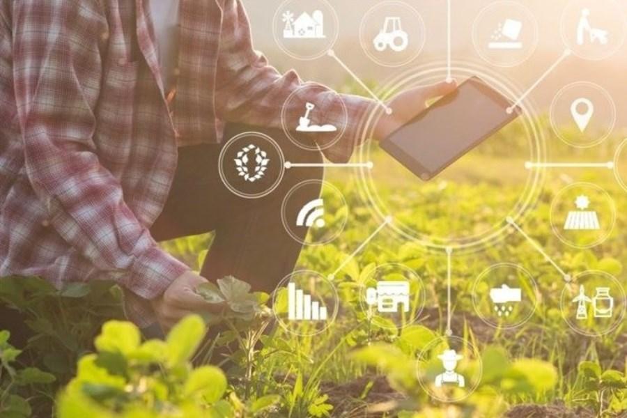 هوش مصنوعی چه کمکی به کشاورزی میکند؟