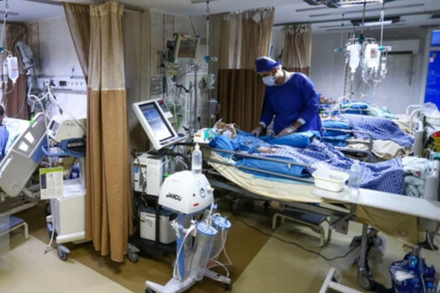کاهش ورودی بیماران کرونایی به  بیمارستان های بوشهر/گذر از پیک پنجم