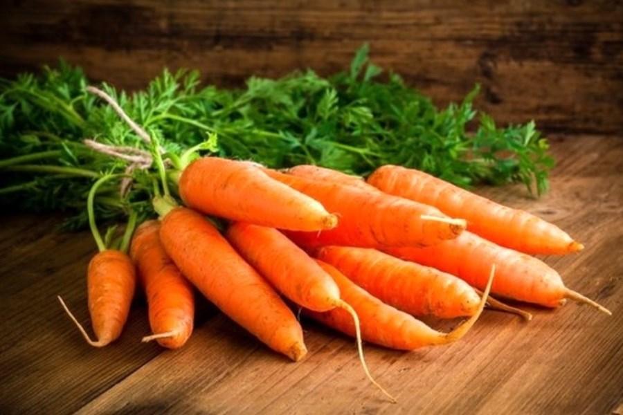 قیمت هویج در بازار کاهش یافت