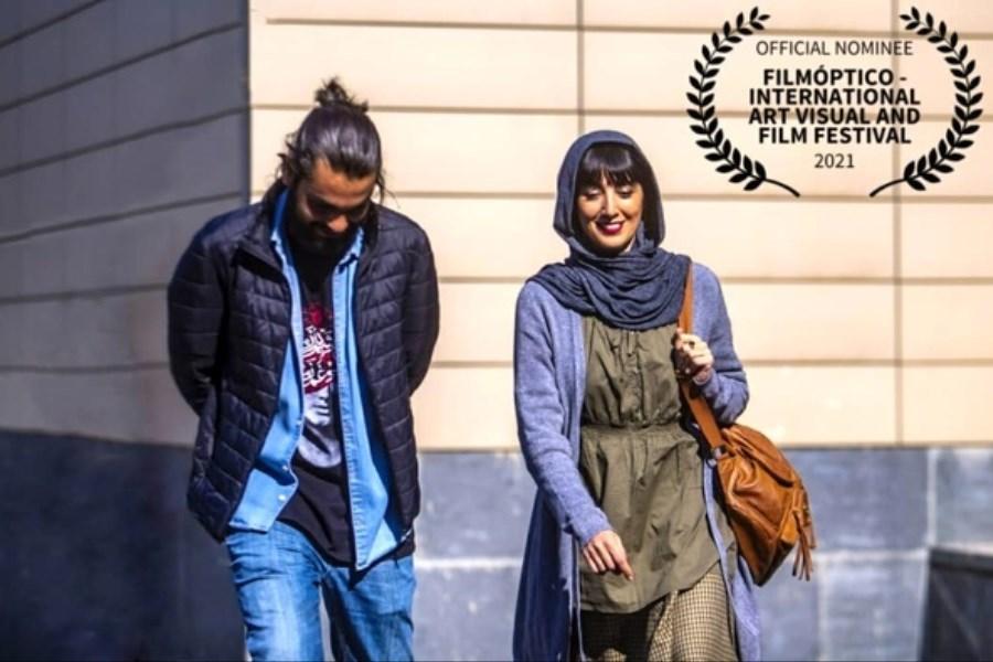 5 جایزه بین المللی برای فیلم سینمایی «جیغ بنفش مورچهها»