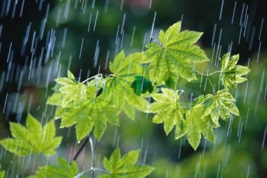 پیشبینی بارشهای پاییزی کمتر از حد انتظار در  کهگیلویه و بویراحمد